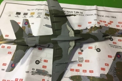 Airfix 1:72 BAe Hawk  T.Mk.1A painted (2)  (Jets of the Cold  War)